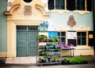 The Doors Collection: Flower Workshop