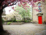 Blossoms and the Red Door, Edinburgh